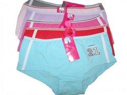 Category: Dropship Dollardays, SKU #428566, Title: Case of [120] Women's Low Rise Panties