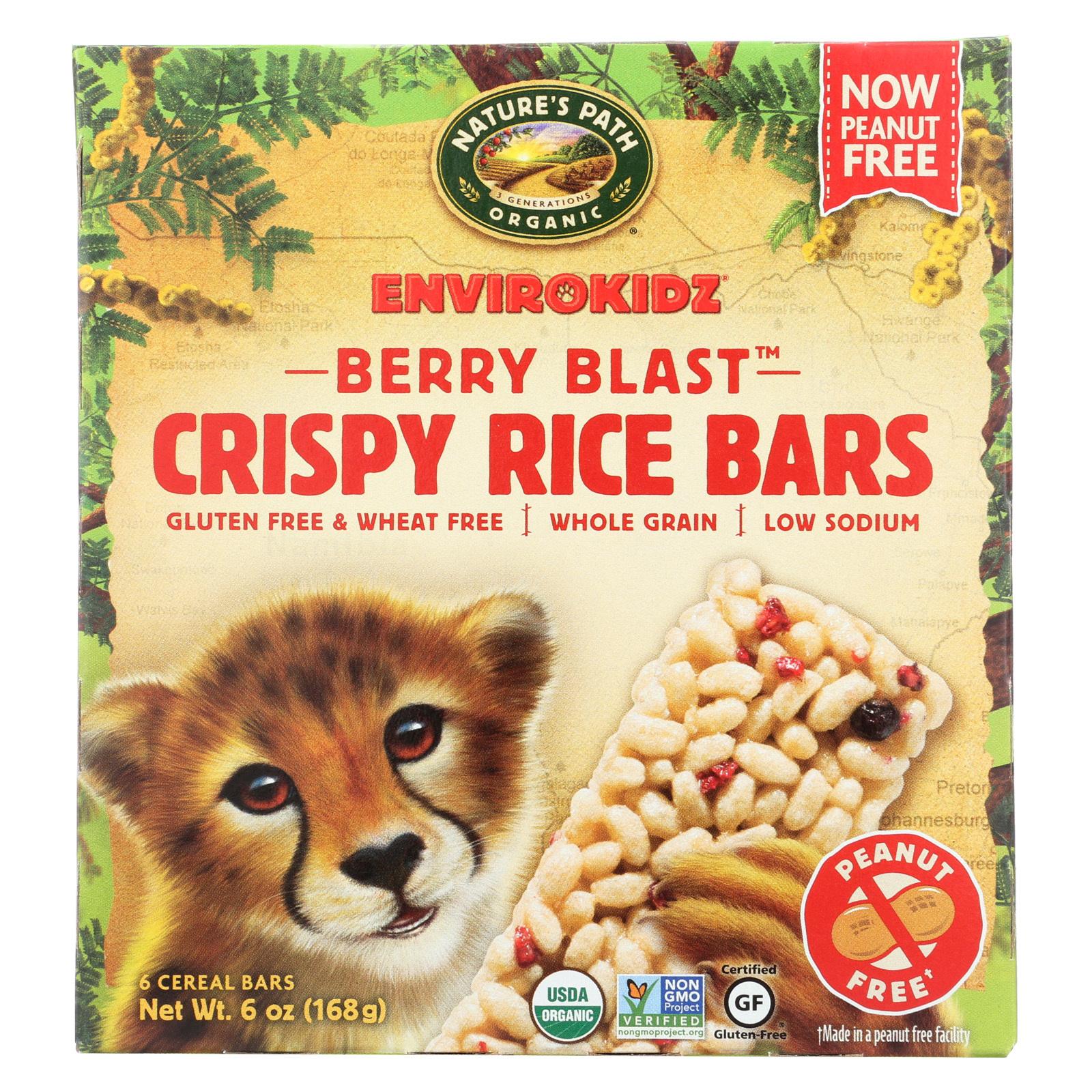 Envirokidz Crispy Rice Bars - Berry Blast - Case of 6 - 6 oz.
