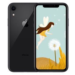 Category: Dropship Cell Phones & Accessories, SKU #PCO_007NV935, Title: Apple iPhone XR RAM 3GB black_256GB