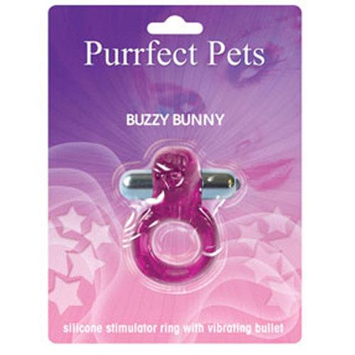 Purrrfect Pets Buzz Bunny