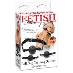 FF Ball Gag Training System