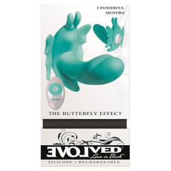Evolved Butterfly Effect