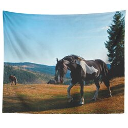 Home Decor, Black And White Stallion Horse Nature Landscape Wall Tapestry