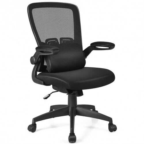 Ergonomic Desk Chair with Soft Pillow