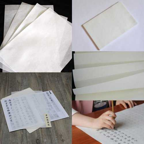 10 Sheets Chinese Calligraphy Rice Xuan Paper Sumi-e Drawing High Ink Absorption