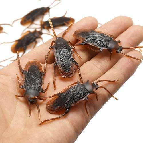 1pc Prank Funny Trick Joke Toys Lifelike Model Simulation Cockroach Kids Children Magic Props