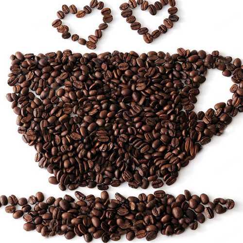 Egrow 10 Pcs/Pack Coffee Beans Seeds Garden Organic Refreshing Food Bonsai Coffee Plant Seed