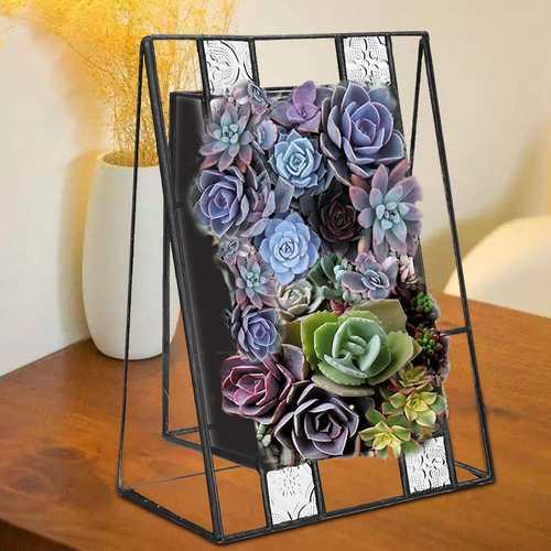 Oblique Plants Bonsai Irregular Glass Box Frame Indoor Succulent Fern Moss Flower Pot