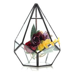 Succulent Plant Triangle Greenhouse Glass Terrarium DIY Micro Landscape Glass Bottle