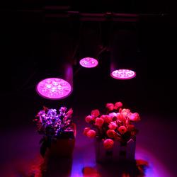 3W 7W 12W LED Plant Lights Grow Lamp Flood Supplementary Light