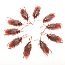 10pcs Prank Funny Trick Joke Toys Lifelike Model Simulation Fake Cockroach Toys Kids Children Props