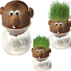 Mini DIY Magic Grass Plant Pot Grass Head Doll Indoor Potted Plant