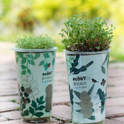 DIY Mini Ceramic Carbon Boll Auto Water Absorption Grass Potted Plant Desktop Office Decor