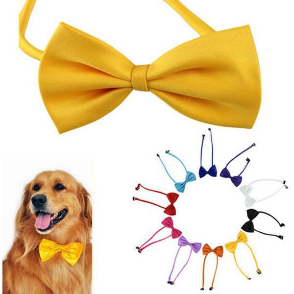 Multicolor Dogs Neck Tie Bow