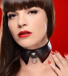 Crimson Tied Regal Sub Collar