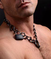 Gunmetal Collar with Lock