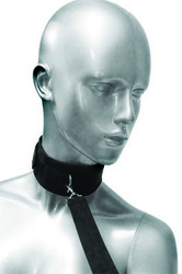 Frisky 46 Inch Leash and Collar Set
