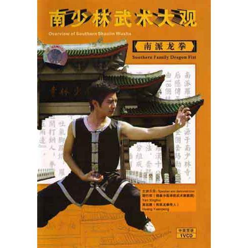 Dragon Fist Kung Fu DVD