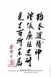 Category: Dropship Collectibles, SKU #GP0013A, Title: General Choi Tenets Rules of Taekwondo Korean Karate Display Plaque 11