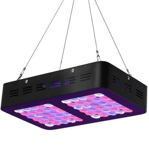 300W LED Full Spectrum for Indoor Plants Flower Bloom Lamp