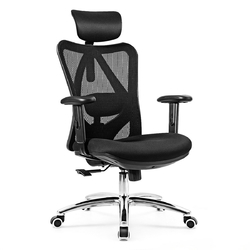 Category: Dropship Office Chairs, SKU #HW62423, Title: Adjustable Height Mesh Swivel High Back Office Chair