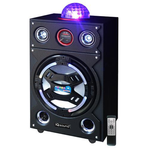 "15"" Portable Bluetooth DJ Speaker"