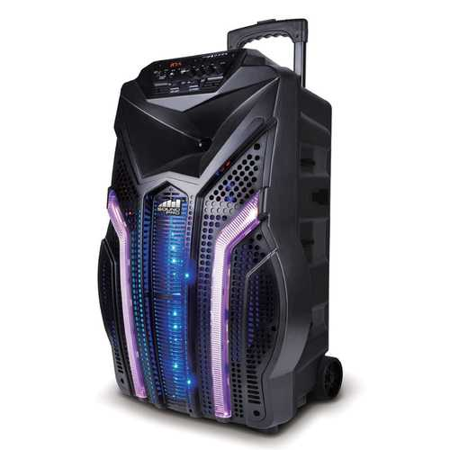 Wireless Portable Karaoke Speaker
