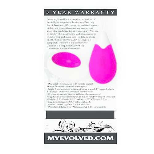 RECHARGEABLE EGG PINK VIBRATOR REMOTE CONTROL