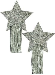 PASTEASE STAR TASSEL SILVER