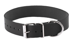 PLAIN COLLAR 1IN W/BUCKLE & D RING