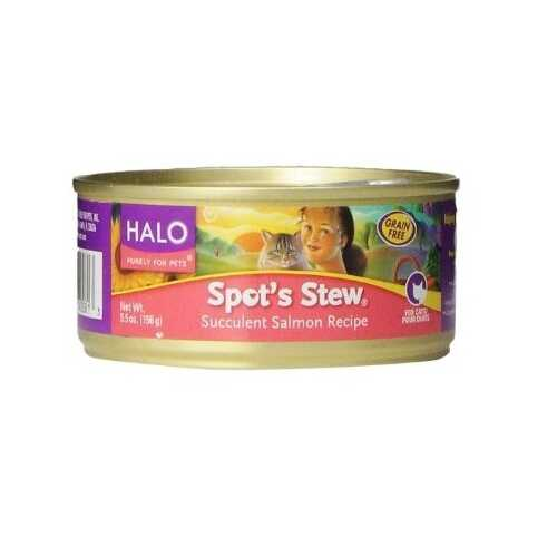 Halo Salmon Wet Cat Food (12x5.5OZ )