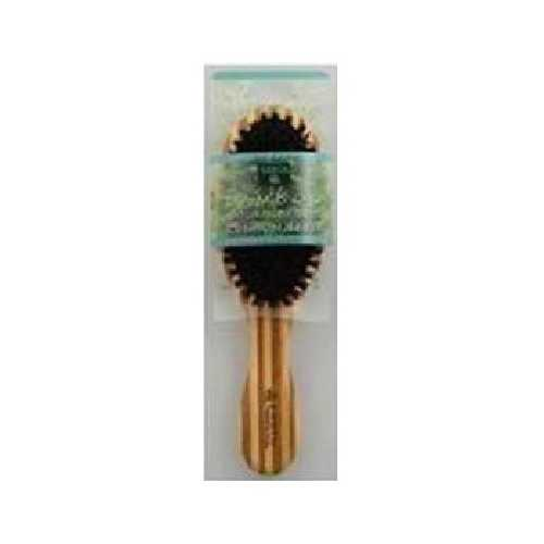 Earth Therapeutics Regular Boar Bristle Brush (1x1 CT)
