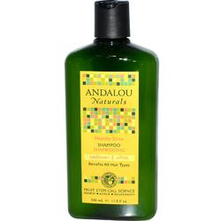 Andalou Naturals Healthy Shine Sunflower & Citrus Conditioner (1x11.5 Oz)