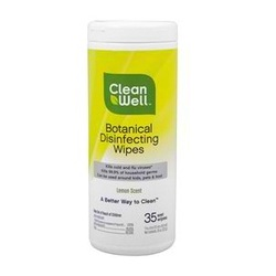 Cleanwell Dsnfctng Wipes (9x35 CT)