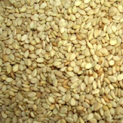 Seeds Hulled Snflower Seed (1x25LB )