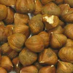 Category: Dropship Grocery, SKU #BWC03540, Title: Nuts Filberts (Hazelnuts) (1x25LB )