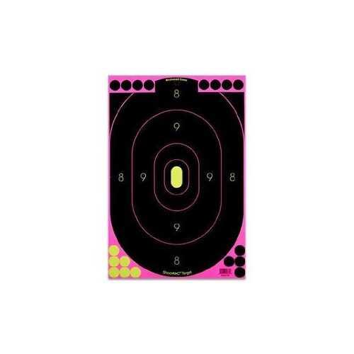 Birchwood Casey Shoot-N-C Pink 12x18 Silhouette Trgt 5 PK