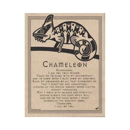 Chameleon Prayer poster