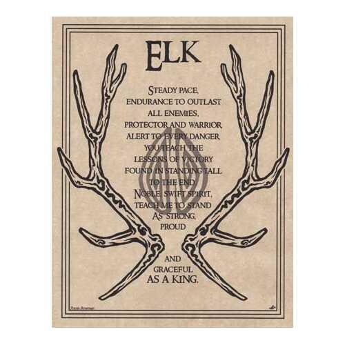Elk Prayer poster