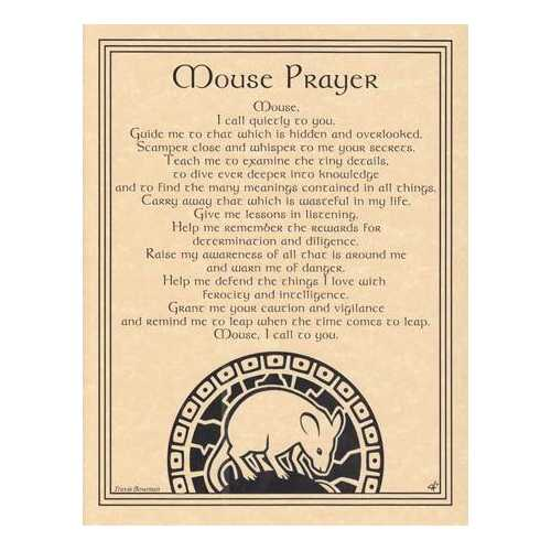 Mouse Prayer poster