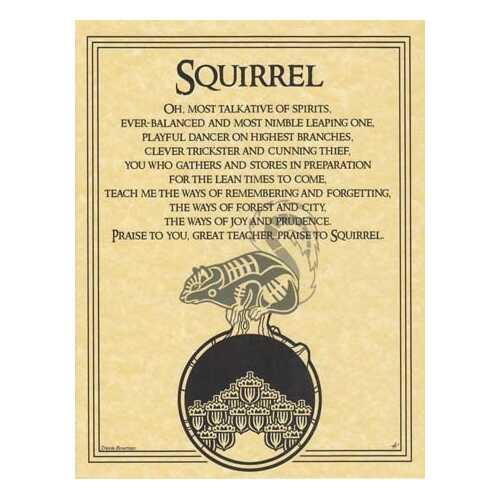 Squirrel Prayer poster