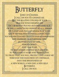 Butterfly Prayer poster