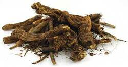 Category: Dropship Occult & Magical, SKU #HGOLRCB, Title: 1 Lb Goldenseal Root cut (Hydrastis canadensis)