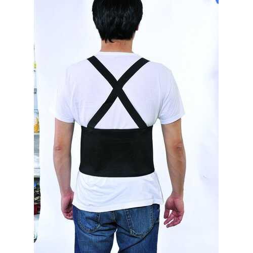 Case of [24] Back Support Large