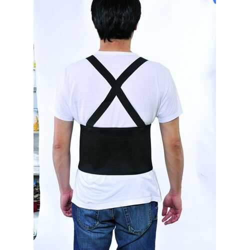 Case of [24] Back Support 2XL