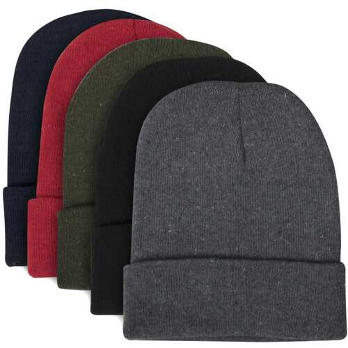 Case of [100] Adult Knit Hat Beanie - 5 Assorted Colors