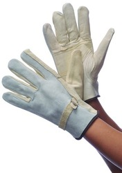 Case of [120] Leather Cowhide Driver Gloves Extra Large