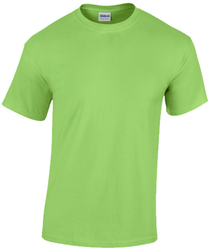 Case of [12] Gildan T-Shirt Style 5000 Lime - Size Large