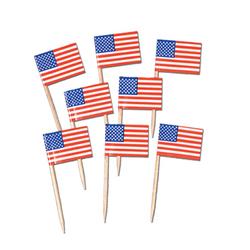Case of [24] Packaged U S Flag Picks