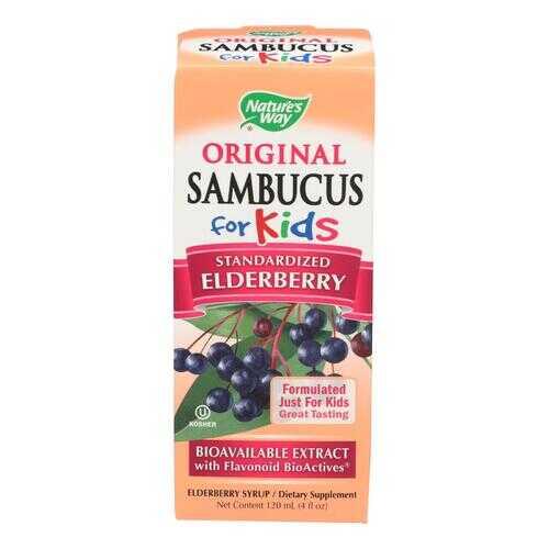 Nature's Way Original Sambucus for Kids - Standardized Elderberry - 4 fl oz